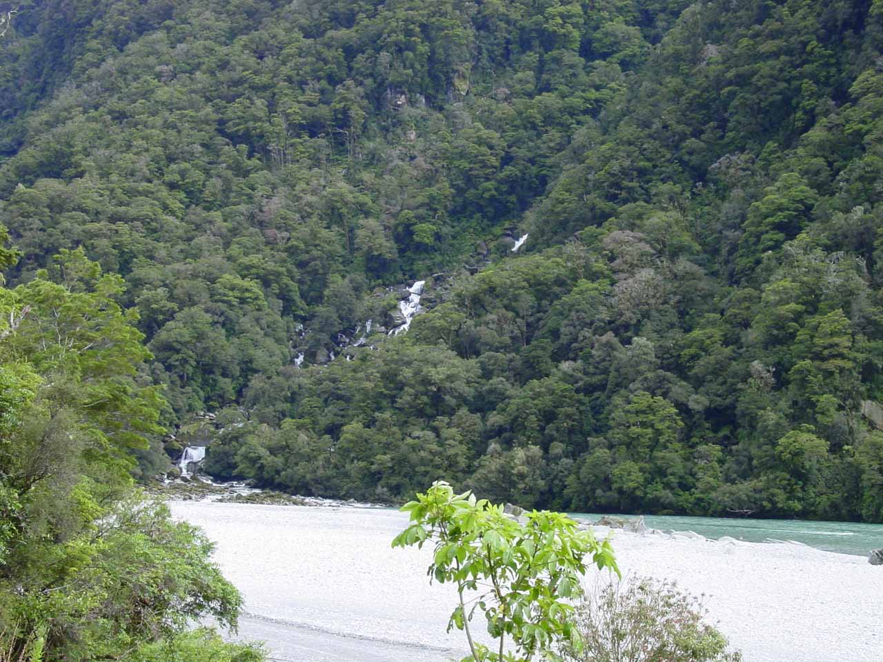 After passing through the bush, we got this angled view of Roaring Billy Falls feeding the Haast River