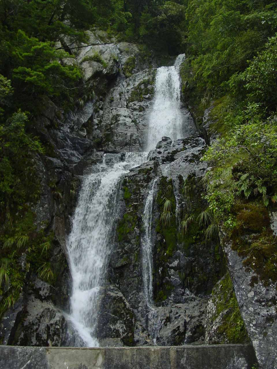 A roadside waterfall nearby the pullout for Fantail Falls
