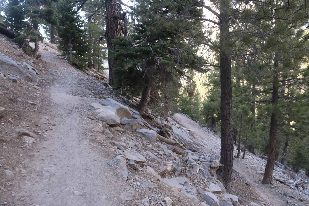 Ascending one of several switchbacks as the Mary Jane Falls Trail gained most of its 1100ft ascent in these zig-zags