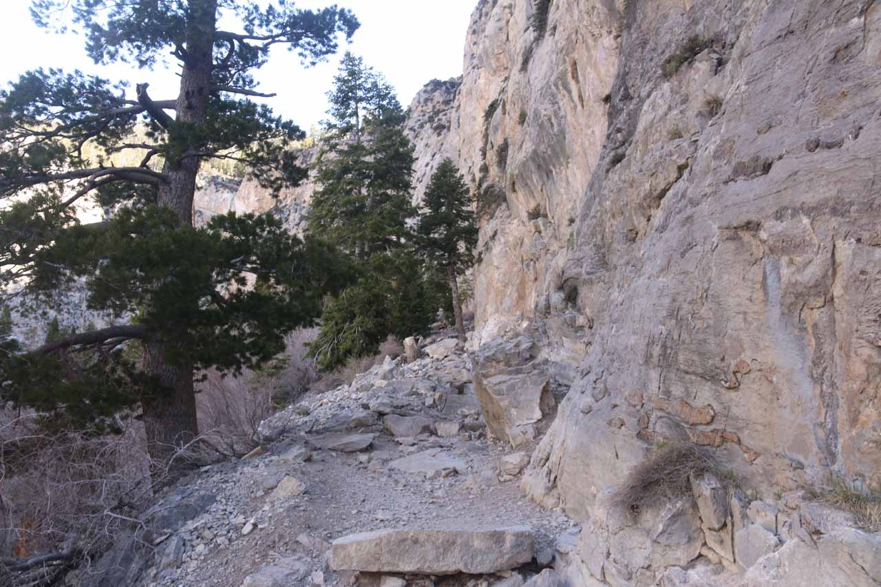 Once I completed the last switchback, the Mary Jane Falls Trail now hugged the base of these cliffs as the elevation gain was more gradual