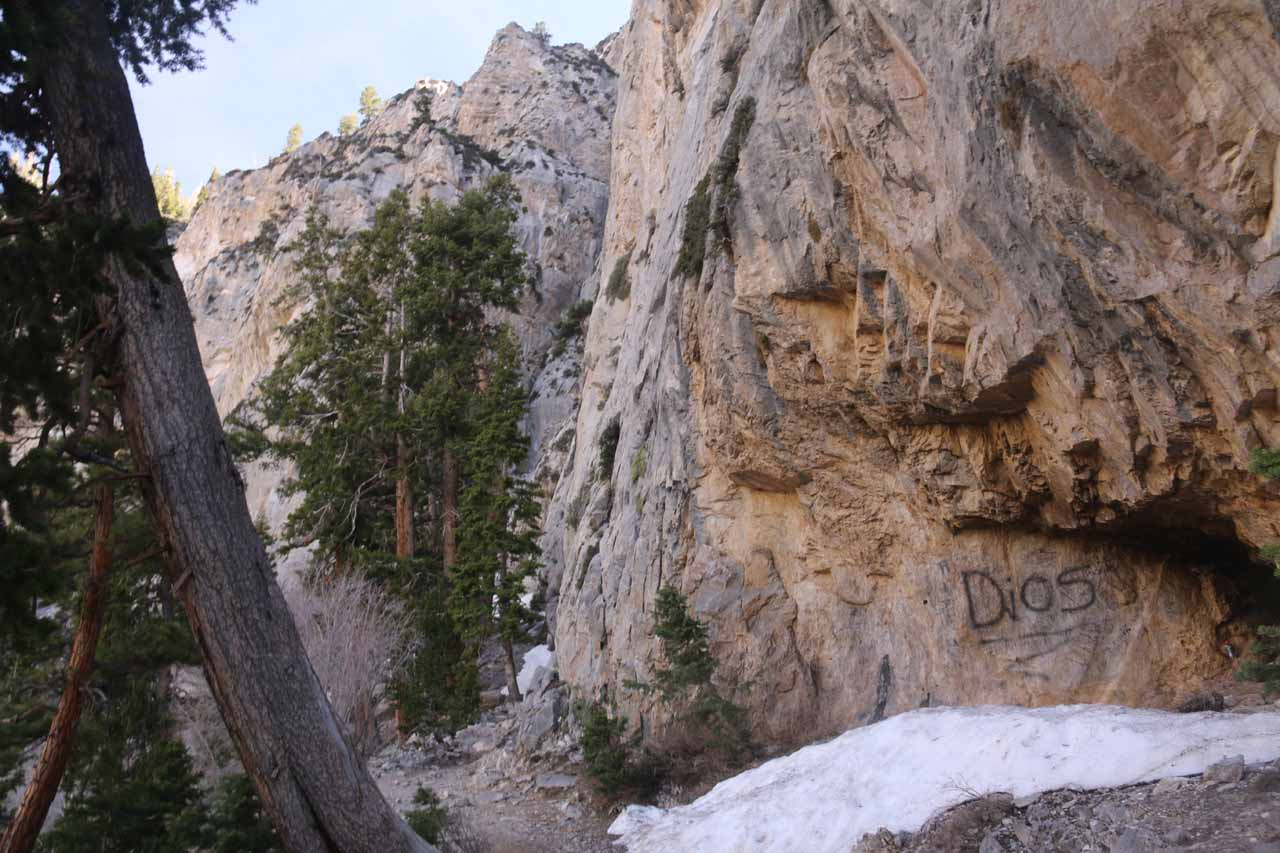 The Mary Jane Falls Trail passed by some alcoves containing some snow and unsightly graffiti