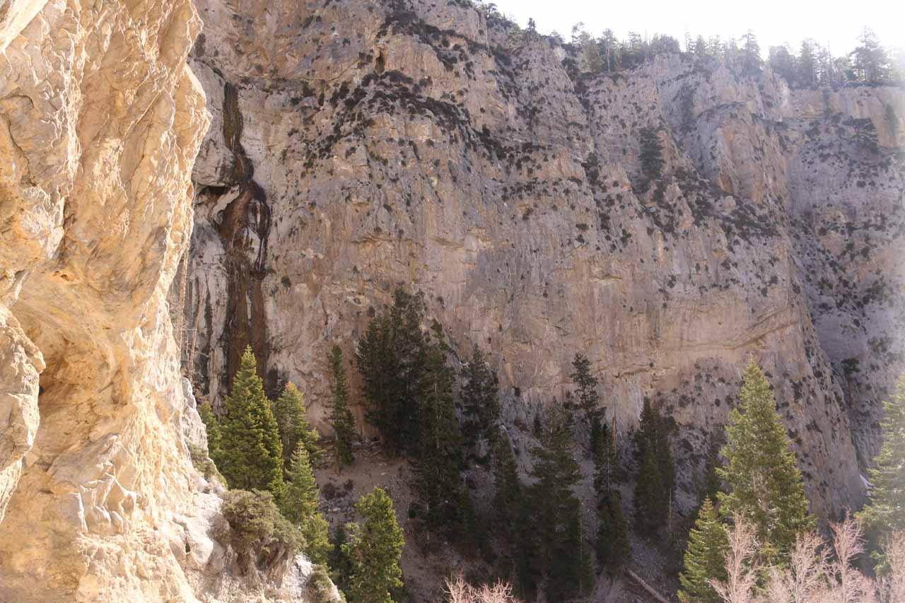 Looking back towards the rightmost segment of Mary Jane Falls from the mouth of the alcove