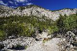 Mt_Charleston_205_08112020 - Following the use-trail towards this crossing of a wash that came in from the right.  The use-trail continued straight ahead into a section between two washes flanked by hard shrubs as seen during my August 2020 hike