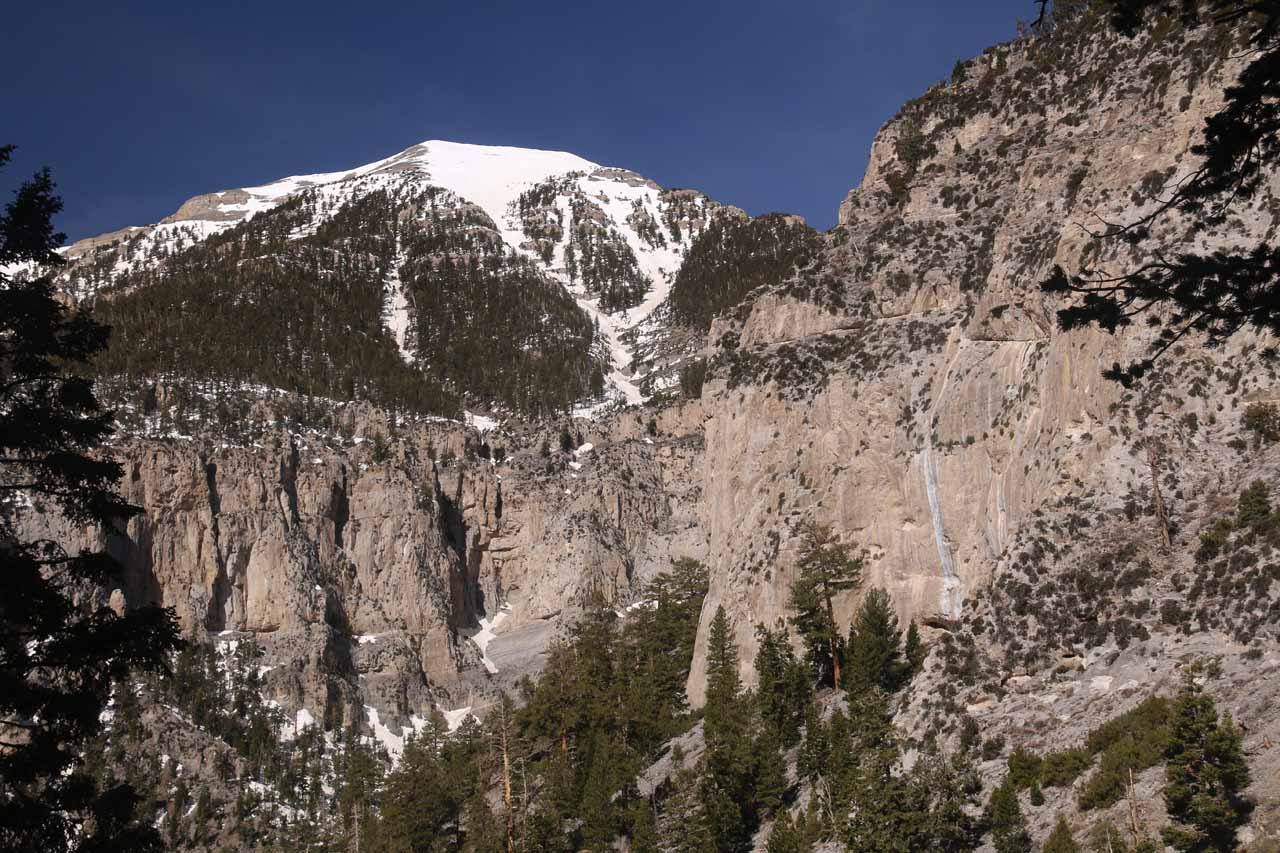 Looking towards what I think was Charleston Peak as I was heading back down the Mary Jane Falls Trail