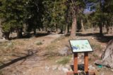 Mt_Charleston_298_04222017 - Looking ahead from the Echo Trailhead, where I had gotten started to pursue Little Falls, but ultimately found myself finding 'Medium Falls' instead