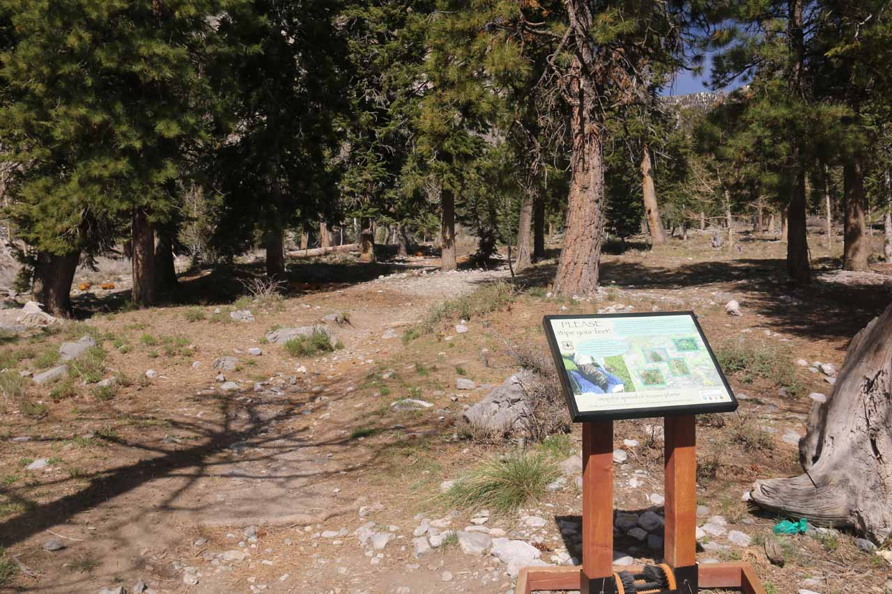 Looking ahead from the Echo Trailhead, where I had gotten started to pursue Little Falls