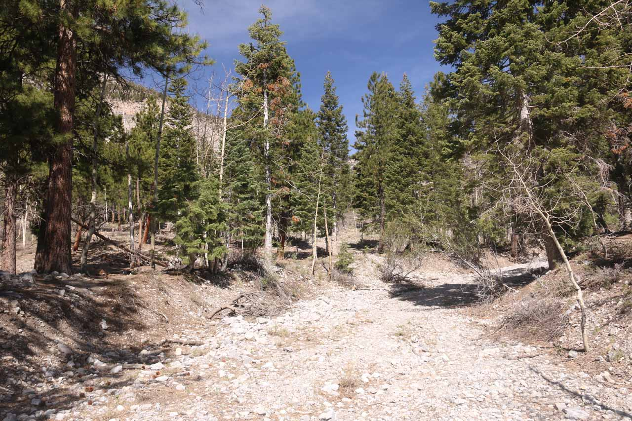 This is the key point to remember. If you find yourself still hiking in this dry wash after more than a minute of leaving the Echo Trail, then you've most likely missed the signed turnoff to continue on the Echo Trail.  So turn back and look for the correct turnoff near the trailhead