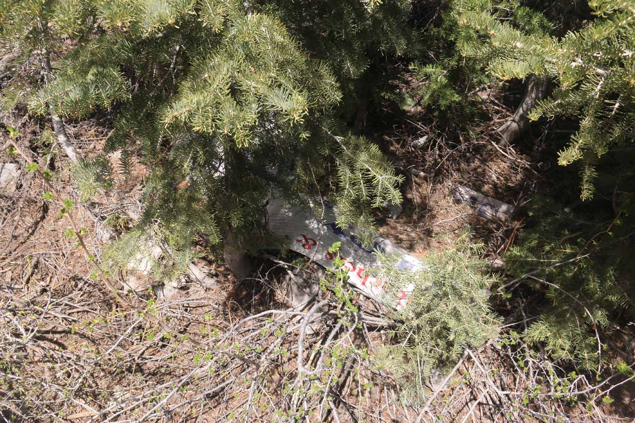 As I was scrambling to look for a path to get up to that waterfall I saw way upslope, I kept seeing signs of people leaving stuff behind or leaving behind chopped trees, which made it all the more confusing