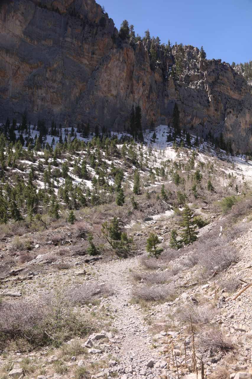 Following the faint trail alongside the creek bed