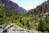 Mt_Charleston_351_08112020 - Looking down Kyle Canyon as I was heading back to the Mary Jane Falls Trail from Big Falls in August 2020
