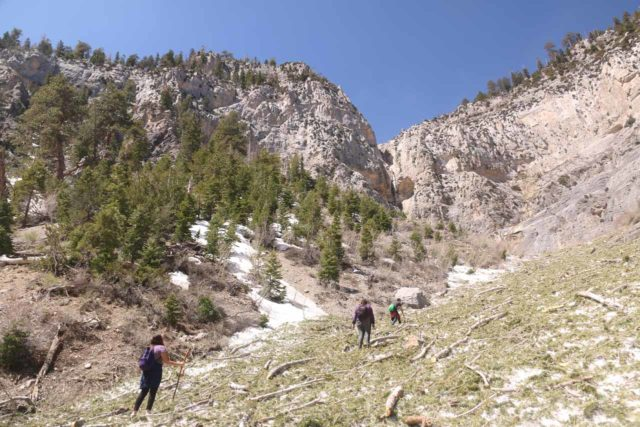 Mt_Charleston_353_04222017 - Following this group of folks who also decided to spontaneously pursue what I'm calling the 'Medium Falls'