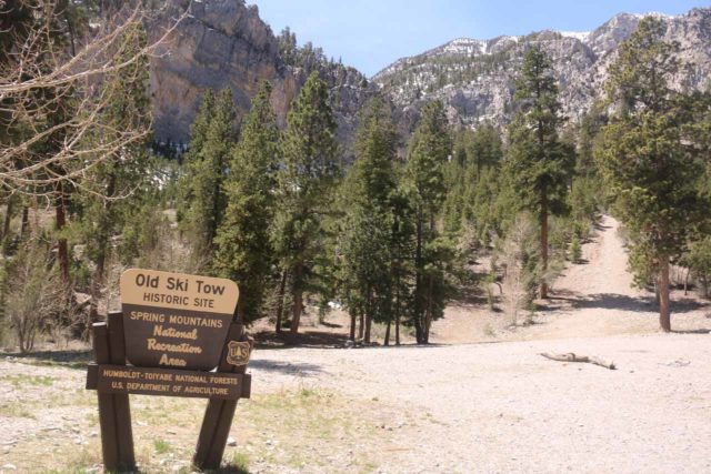 Mt_Charleston_376_04222017 - When I returned from the 'Medium Falls' I somehow found myself near this sign for the Old Ski Tow, which was actually by a different parking lot and trailhead than the Echo Trailhead that I had started from