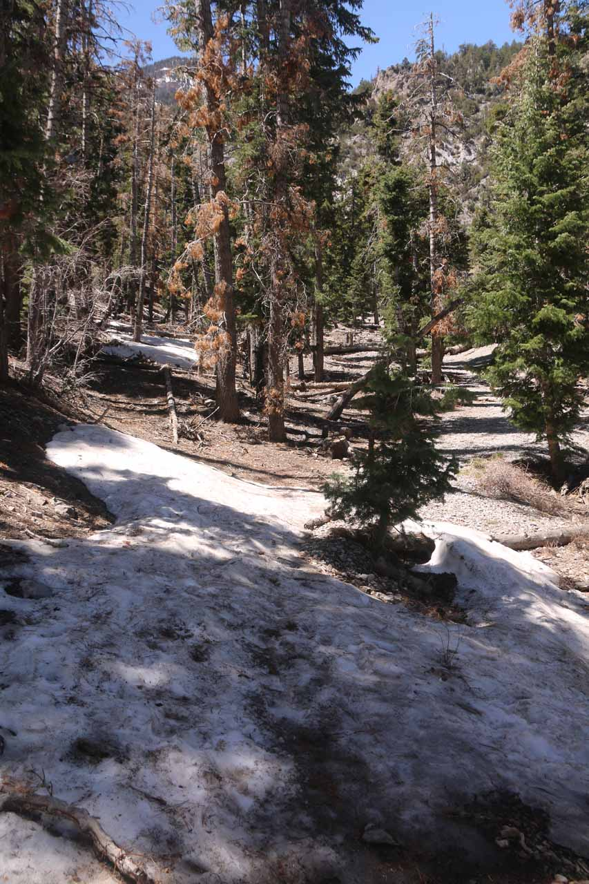 When I finally found the correct 0.3-mile spur path to Little Falls, I started to encounter some snow patches. Little did I realize that this was a foreshadowing of what was to come later