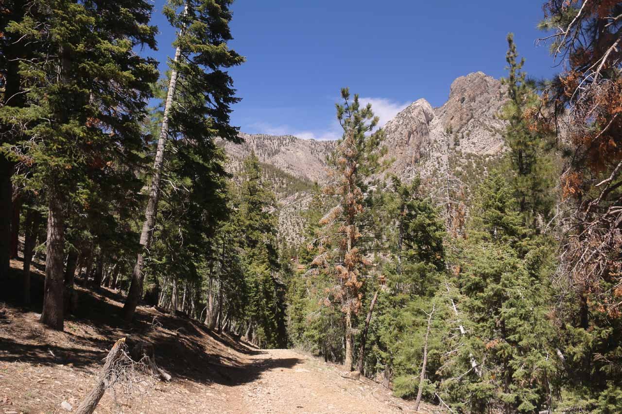 Back on drier terrain as I was making the downhill hike back to the Echo Trailhead