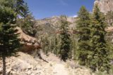 Mt_Charleston_481_04222017 - Descending back down to the wash near the Echo Trailhead to end off my late April 2017 hike