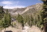 Mt_Charleston_483_04222017 - Looking in the other direction further up Kyle Canyon on my way back from Little Falls towards the Echo Trailhead