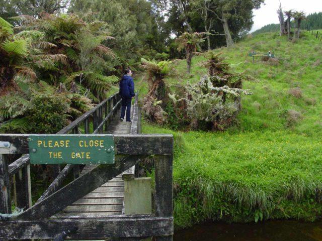 Mt_Damper_Falls_004_11172004 - The gated bridge marking the change between pastures and native bush lands