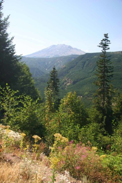Mt_St_Helens_005_08222009