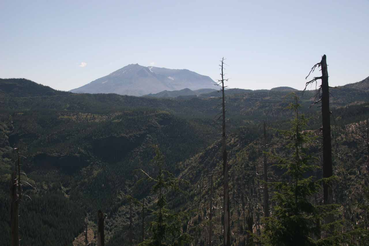 On the same day we visited Falls Creek Falls, we also drove all the way out towards the blast zone of Mt St Helens to see for ourselves the magnitude of the path of destruction that is still recovering from that event nearly 30 years later!