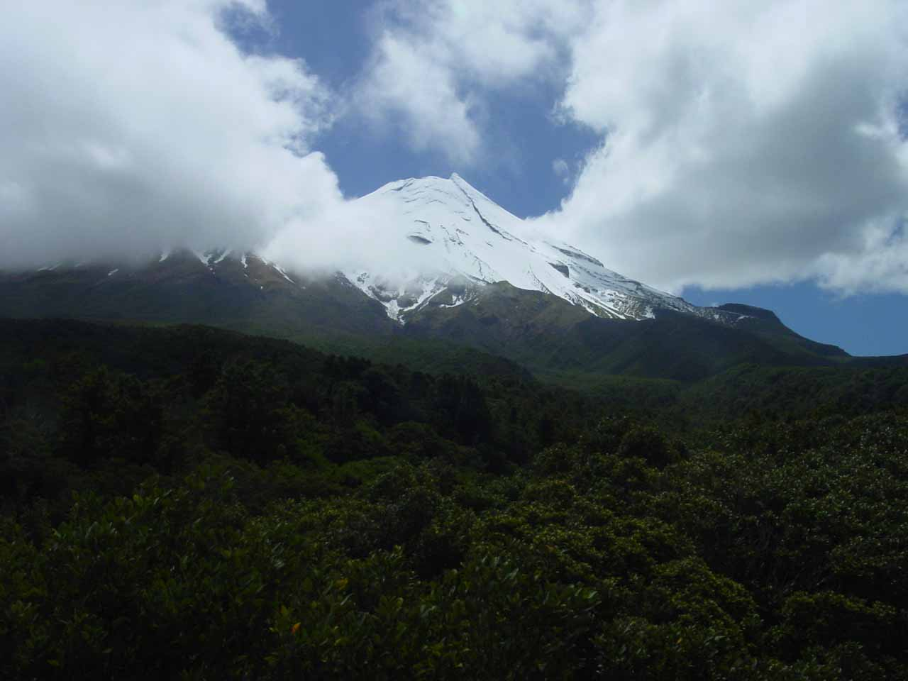 Seeing Mt Taranaki from the Dawson Falls visitor centre