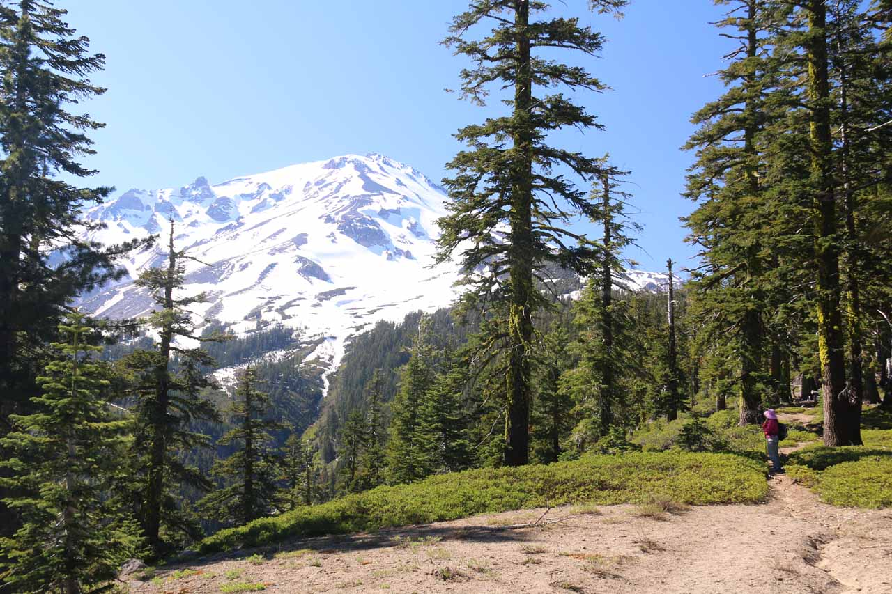 At this point, Mt Shasta's peak could be clearly seen along the Clear Creek Trail