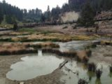 Mud_Volcano_17_010_jx_08122017 - Another look at the thermally active Mud Volcano section of Yellowstone taken during Julie and Tahia's Yellowstone tour