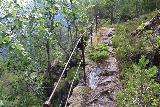 Muldalsfossen_122_07172019 - The narrower and more primitive trail leading down from Muldal Farm to the overlook of Muldalsfossen, which hugged cliffs and had railings to mentally help prevent you from falling off