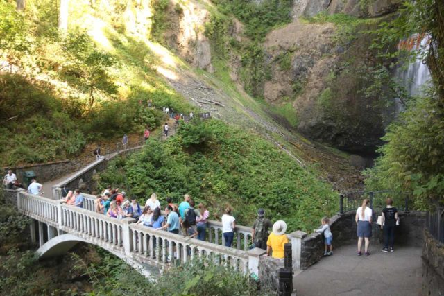 Multnomah_Falls_17_022_08162017 - It can get quite busy on the iconic Benson Bridge, which sat between the upper and lower drops of Multnomah Falls