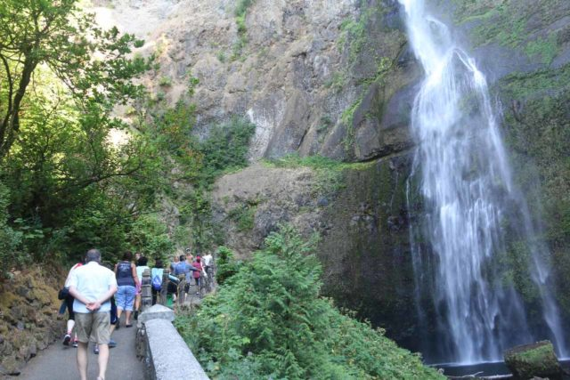 Multnomah_Falls_17_030_08162017 - The trail continuing beyond the Benson Bridge towards base of the upper drop of Multnomah Falls before climbing in earnest up the 11 signed switchbacks to the top of the falls