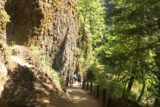 Multnomah_Falls_17_036_08162017 - Looking back at the context of cliffs and the Multnomah Falls Trail as I was approaching the switchbacks leading up to the top