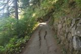 Multnomah_Falls_17_050_08162017 - This part of the Multnomah Falls Trail seemed to have some deformations as apparently parts of the underbelly may be sliding down