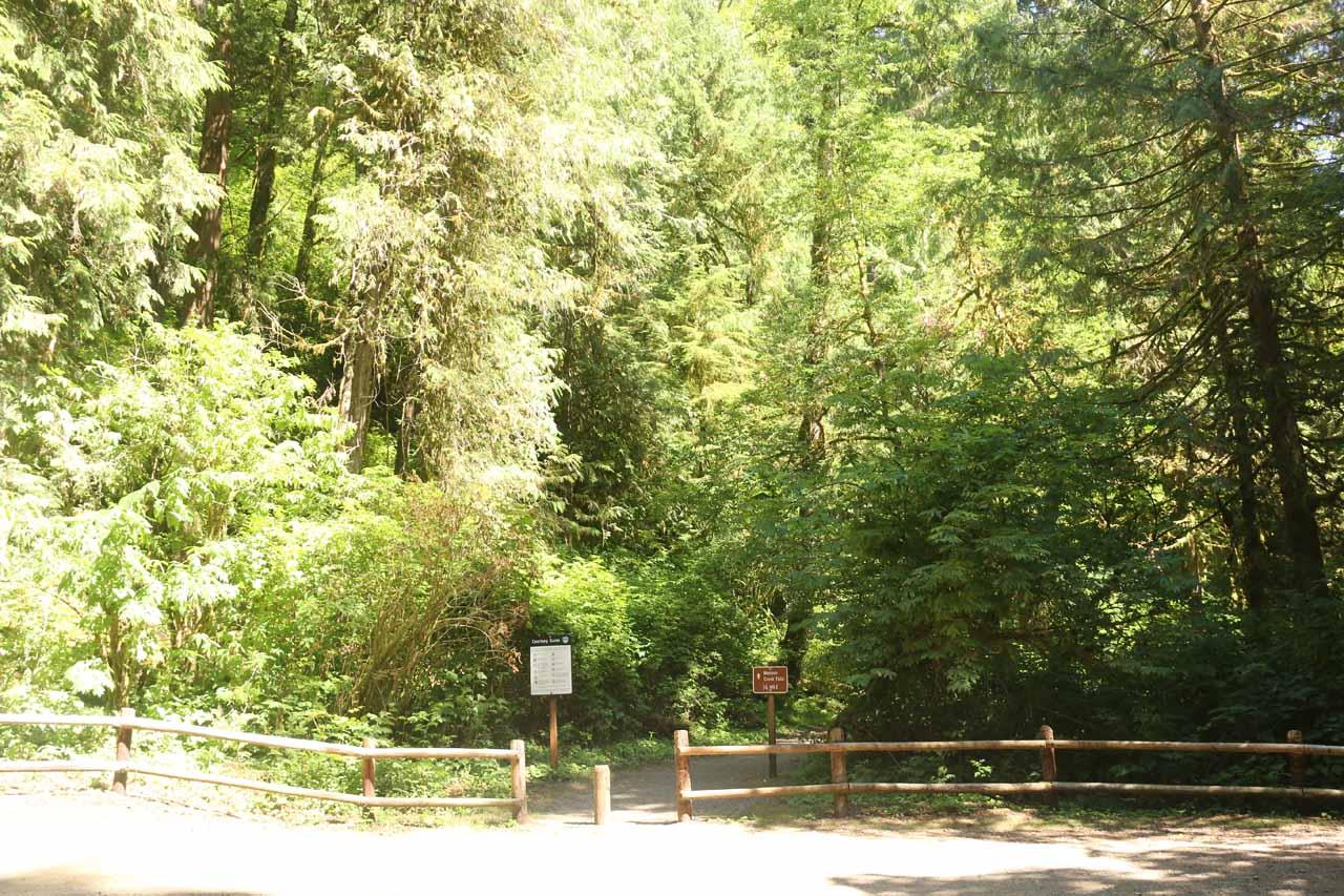 The trailhead for the Munson Creek Falls