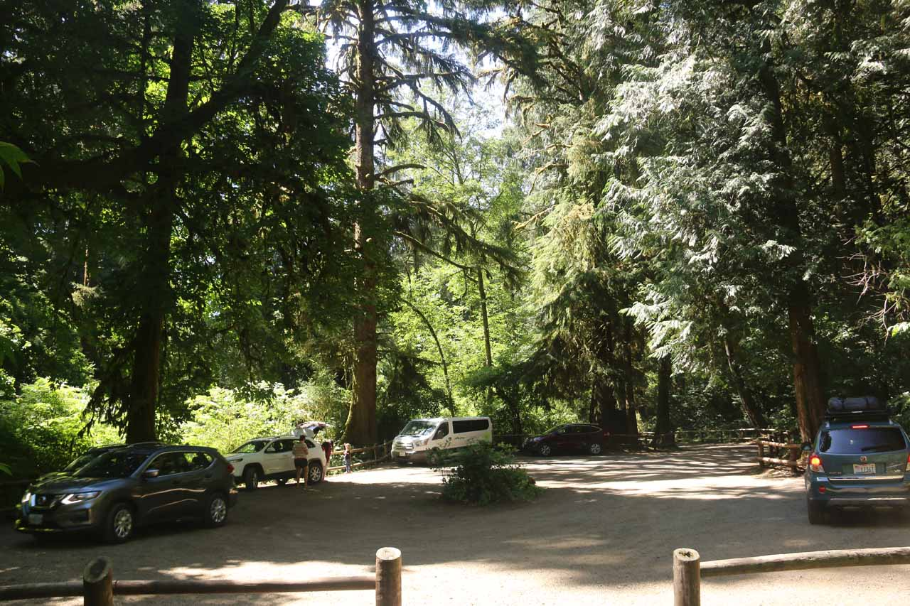 Looking back at the cars parked at the trailhead for Munson Creek Falls