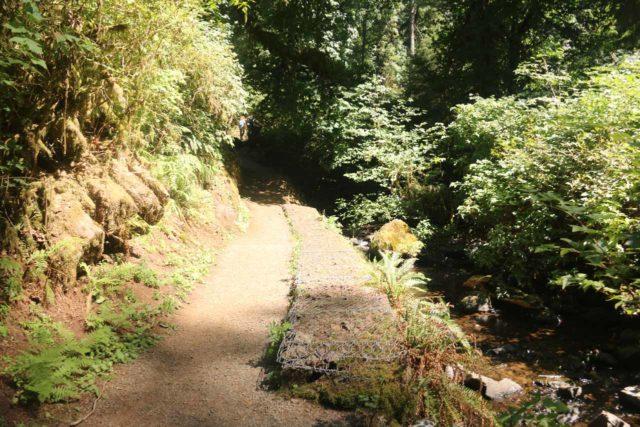Munson_Creek_Falls_011_08172017 - The Munson Creek Falls Trail followed along Munson Creek
