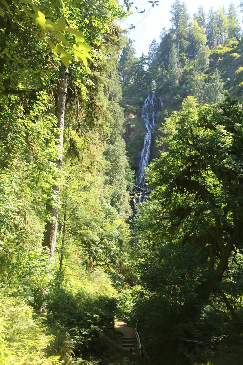 Getting my first look at the Munson Creek Falls after going up a short hill