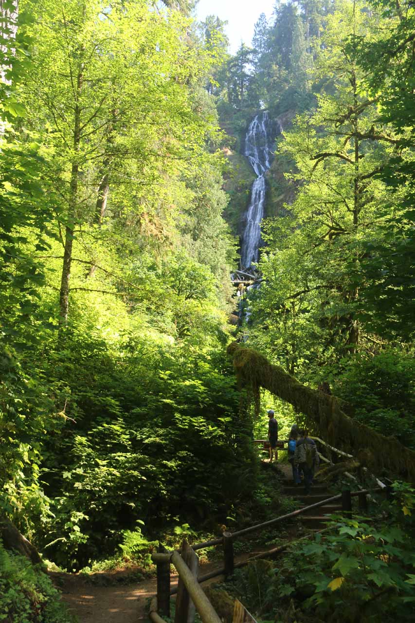 The trail appeared to continue to move closer to Munson Creek Falls