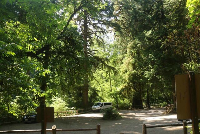 Munson_Creek_Falls_038_08172017 - Returning to the trailhead for the Munson Creek Falls, which was popular, but people don't tend to linger around given the trail closure on our August 2017 visit