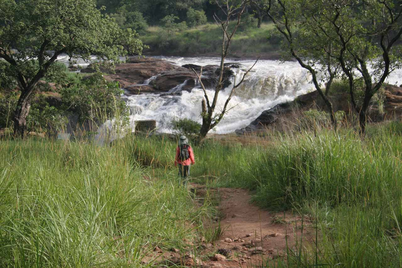 Julie approaching Murchison Falls