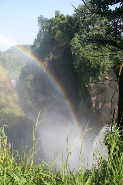 Murchison_Falls_332_06142008 - Bold rainbow arcing in the mist of Murchison Falls