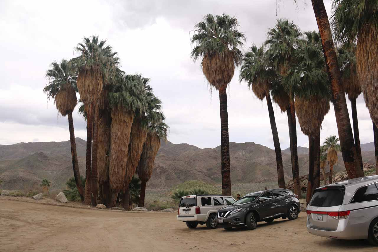 The car park closest to the trailhead for Murray Canyon