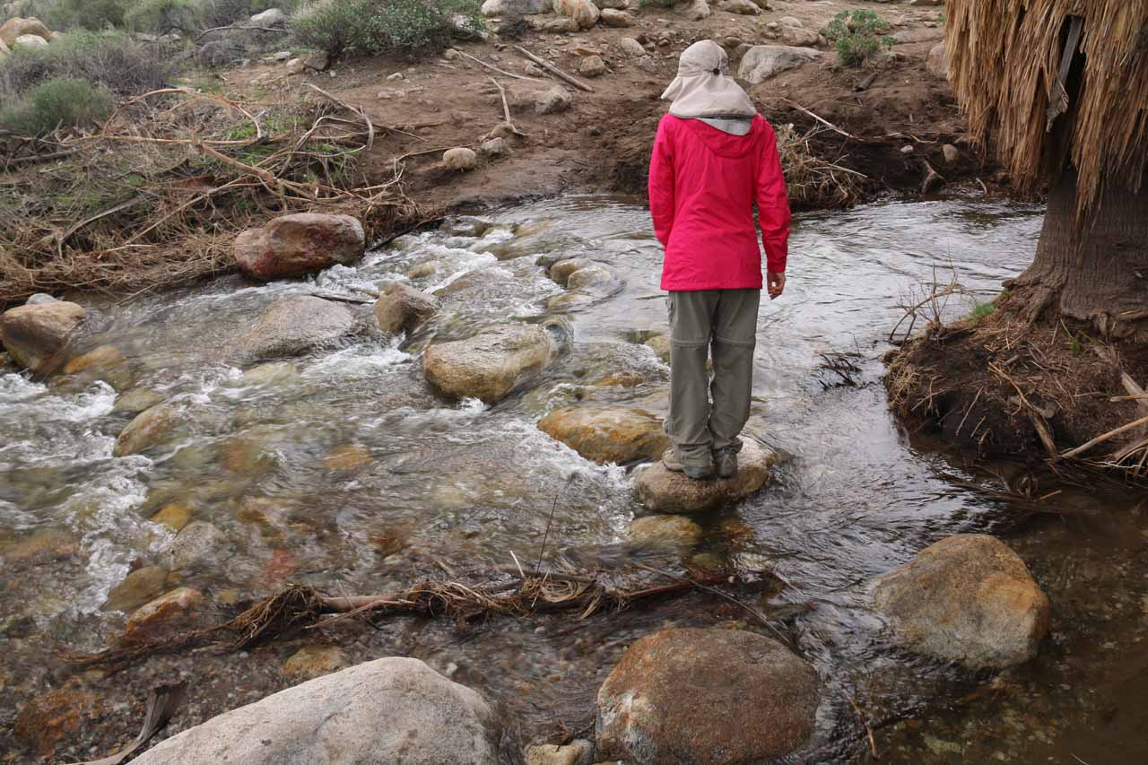 Julie trying to keep her feet dry on the first stream crossing of Murray Creek