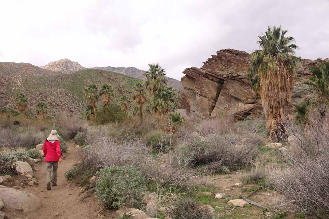 Julie now hiking upstream along Murray Creek with some neat rock formations to our right and the San Jacinto Mountains up ahead