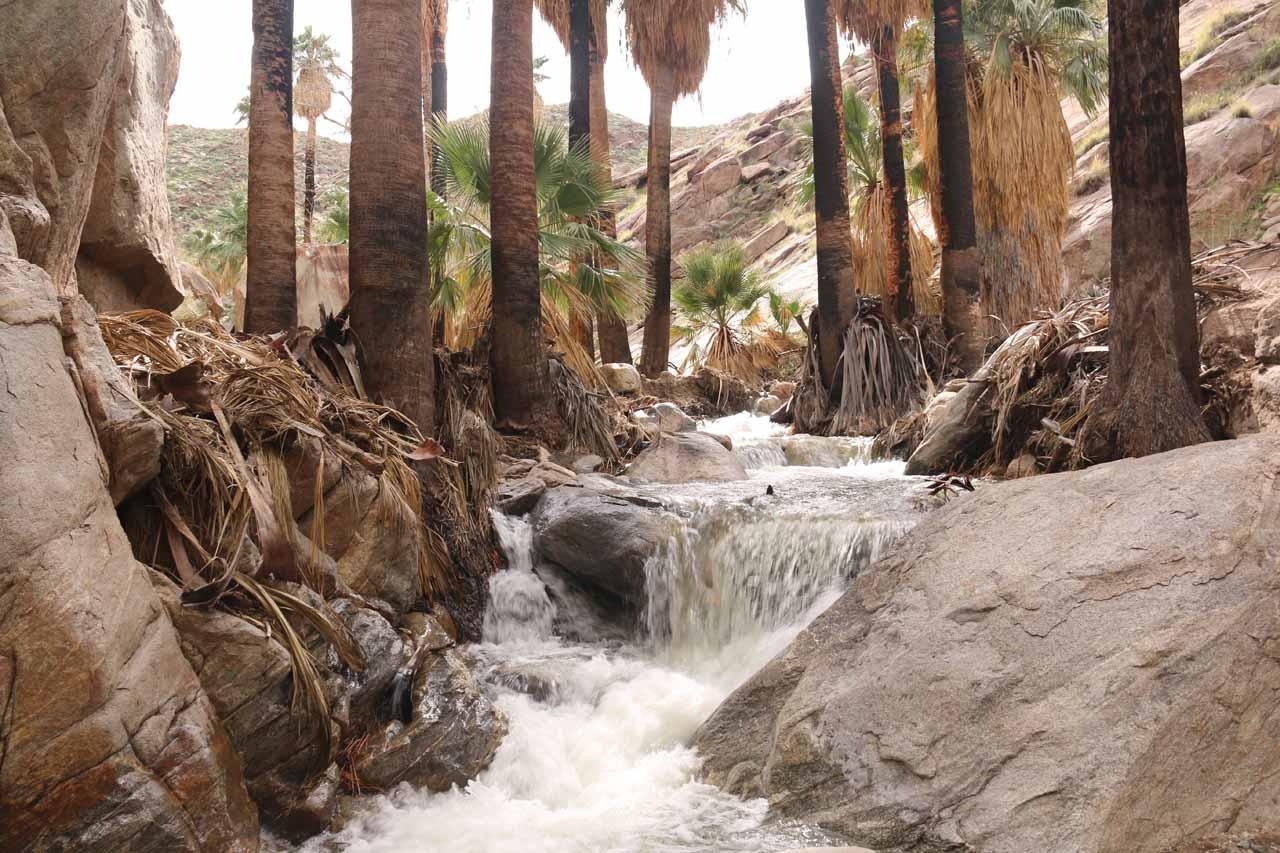 Some intermediate cascades along Murray Creek