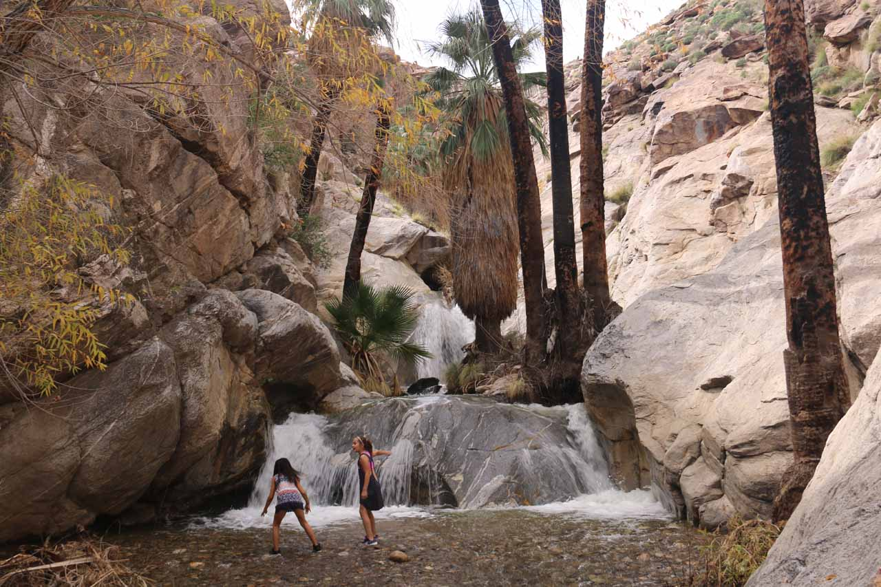 Our first look at the main Murray Canyon Falls