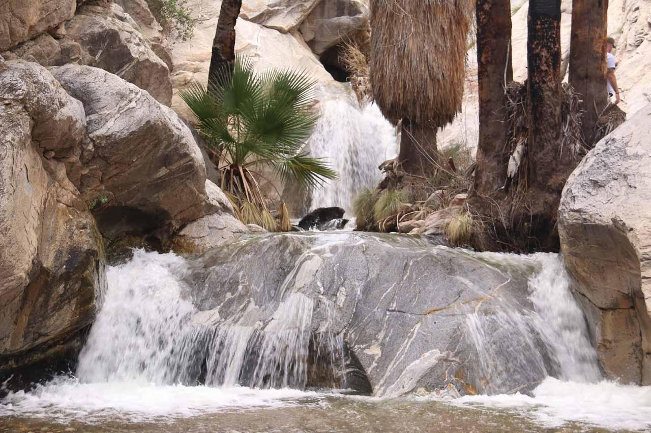 Closer look at the main Murray Canyon Falls