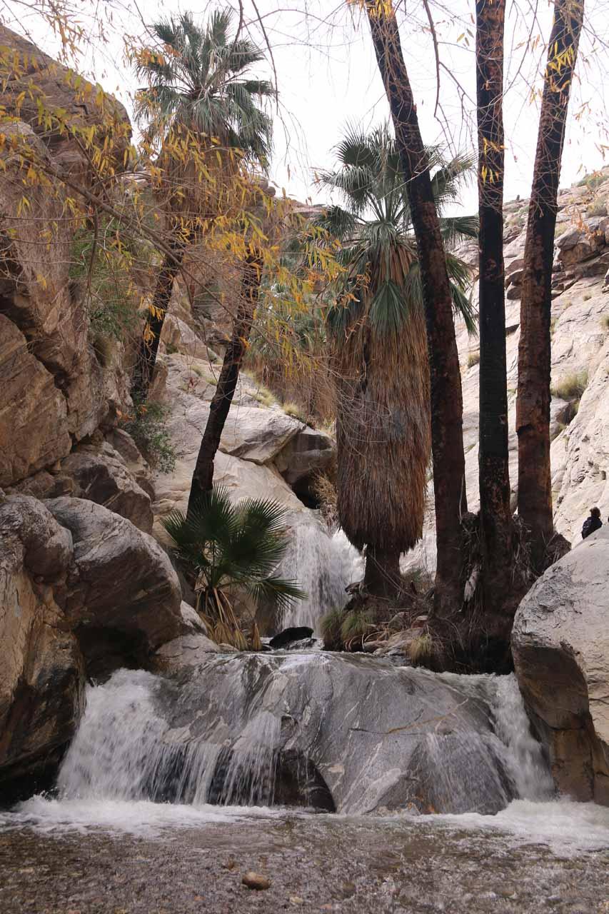 Murray Canyon Falls