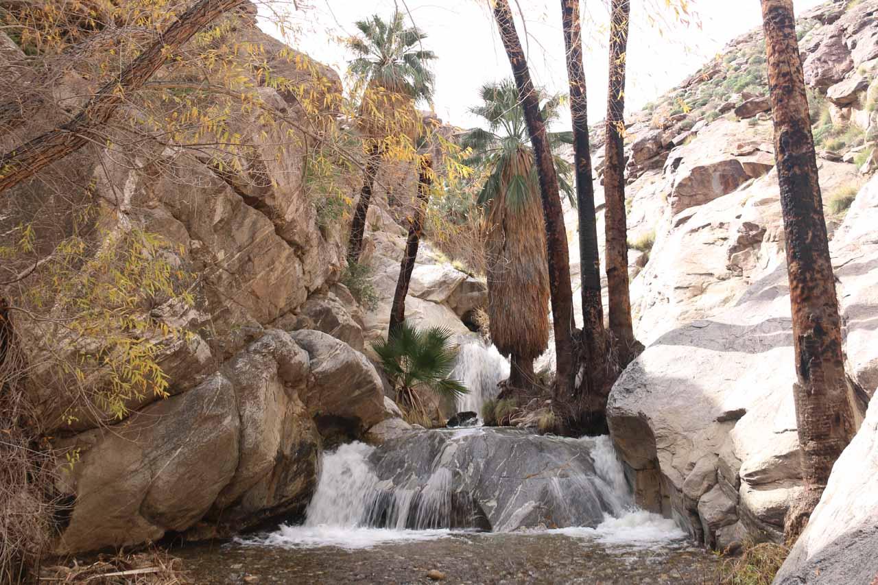 Contextual look at the main Murray Canyon Falls