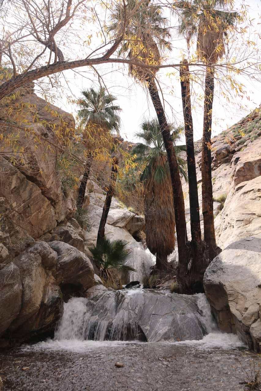 Contextual view of Murray Canyon Falls