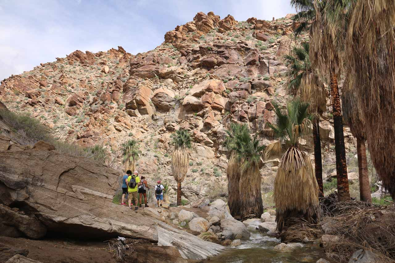 When these folks started to hike downstream, Julie and I momentarily had the Murray Canyon Falls to ourselves