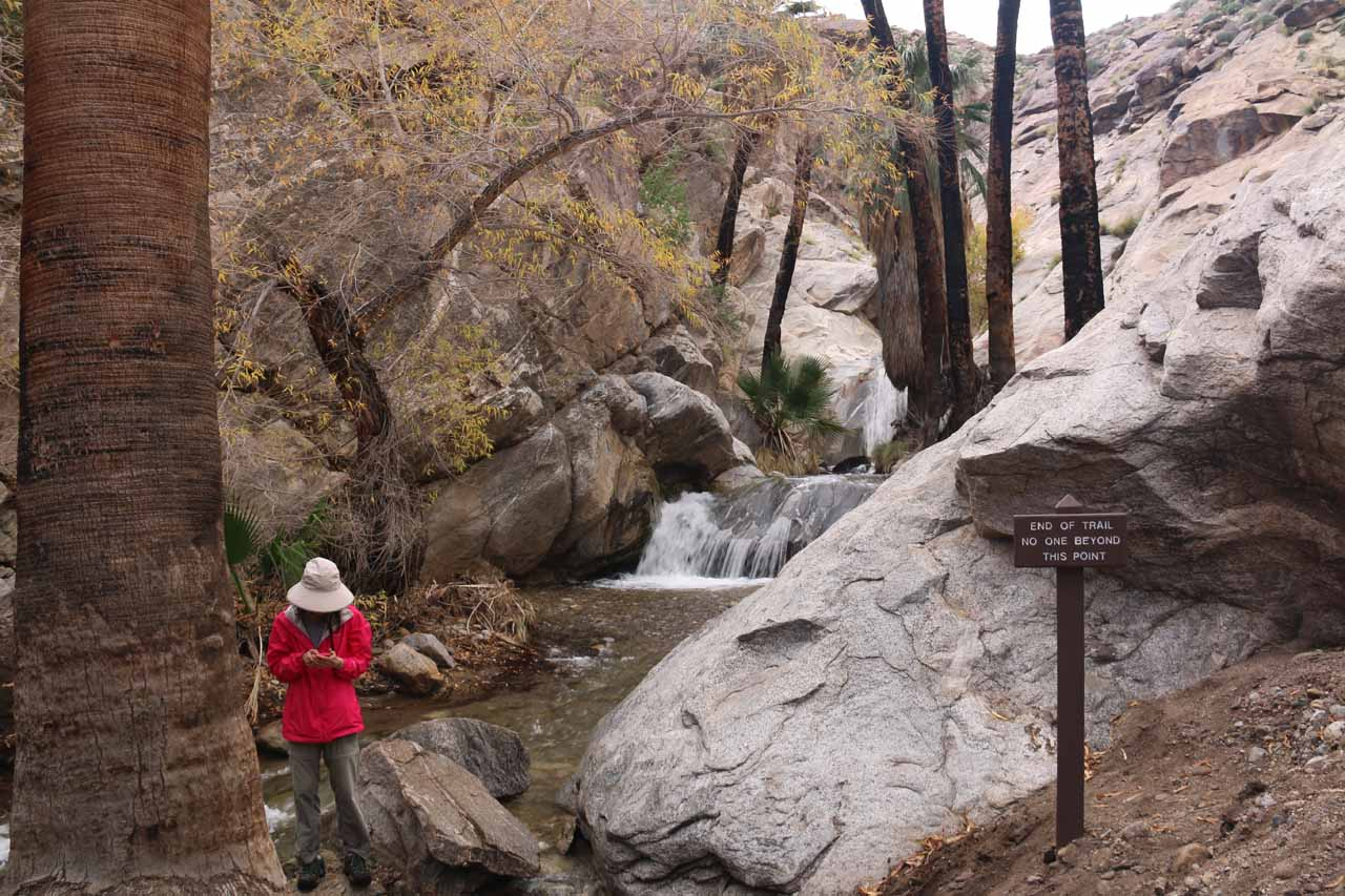 Last look back at the Murray Canyon Falls before we hiked downstream